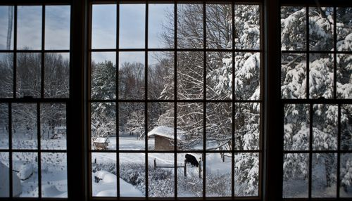 Winter_view_from_upstairs